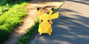 i-caught-the-elusive-pikachu-also-in-central-park-the-wide-species-diversity-in-the-park-makes-the